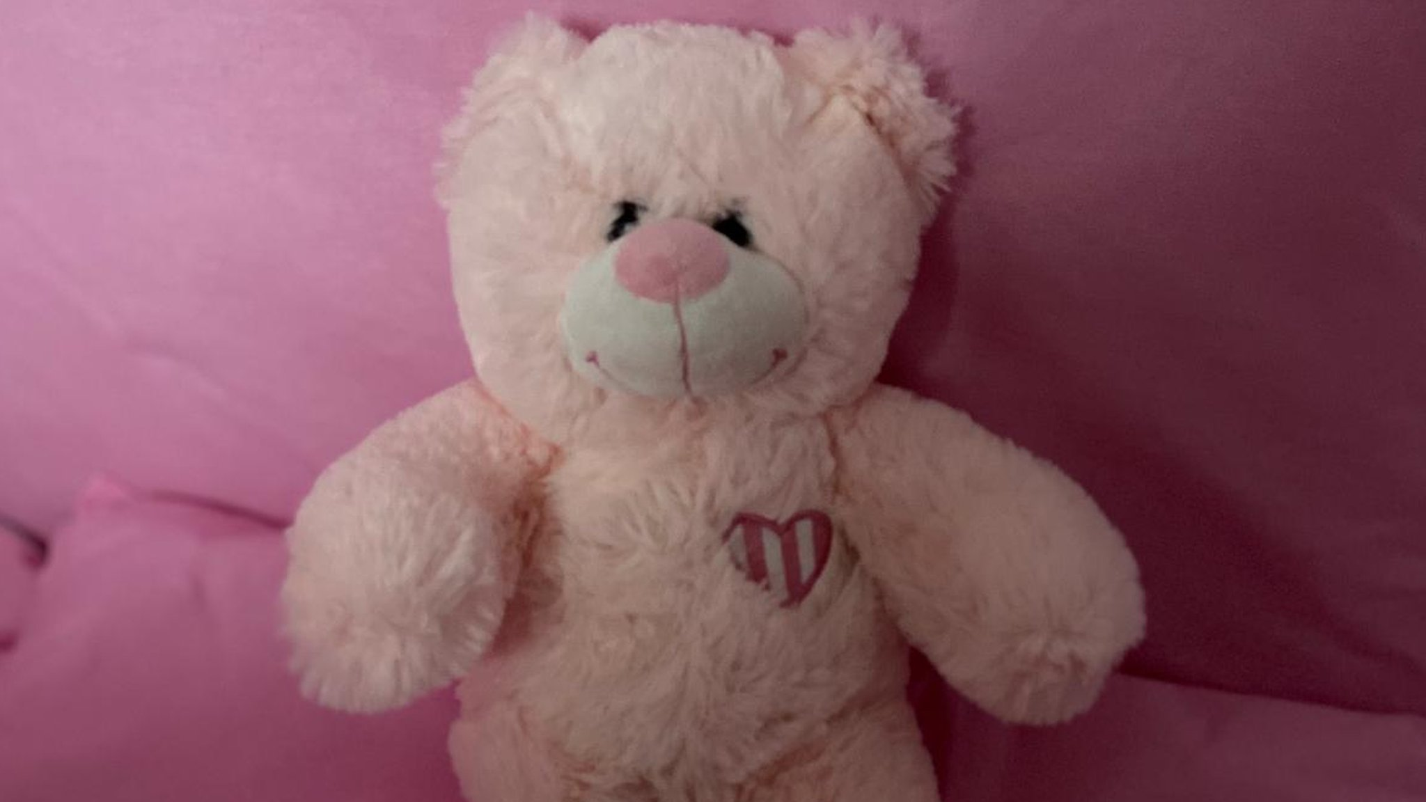 Private baby scan teddy bear