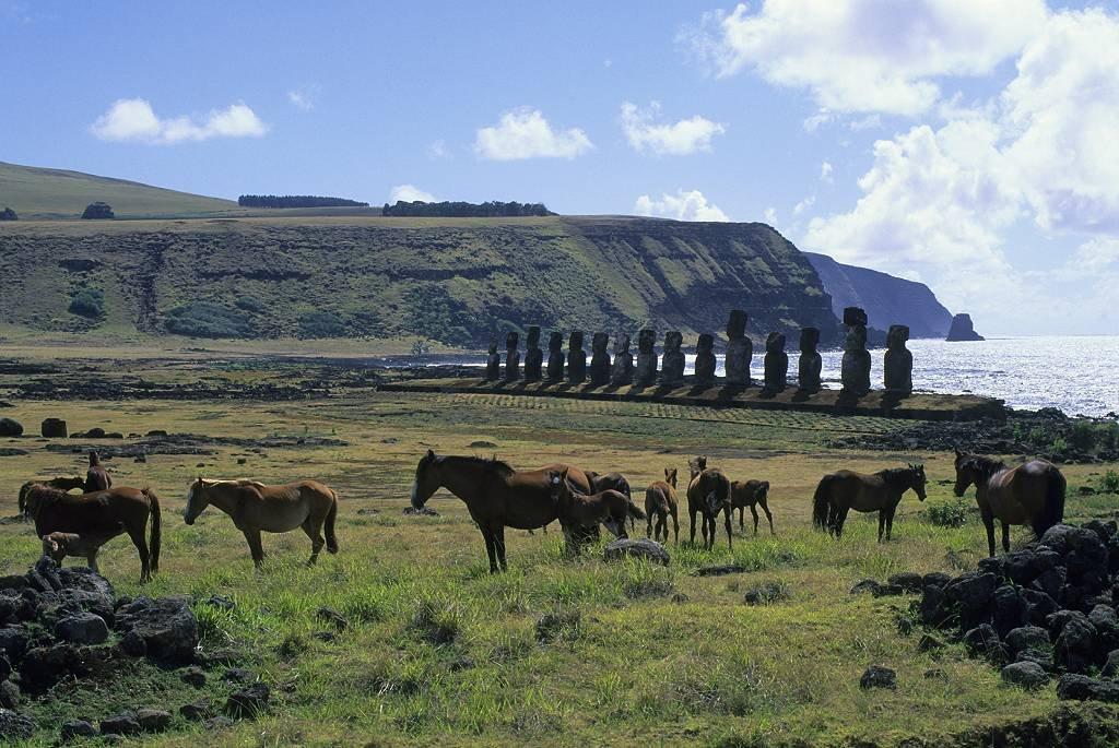 caballos en Isla de Pascua