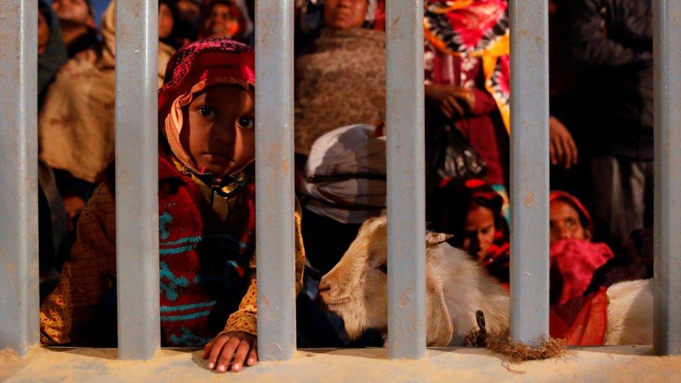 Devotos se reúnen ante el inminente comienzo de las ceremonias de sacrificio animal.