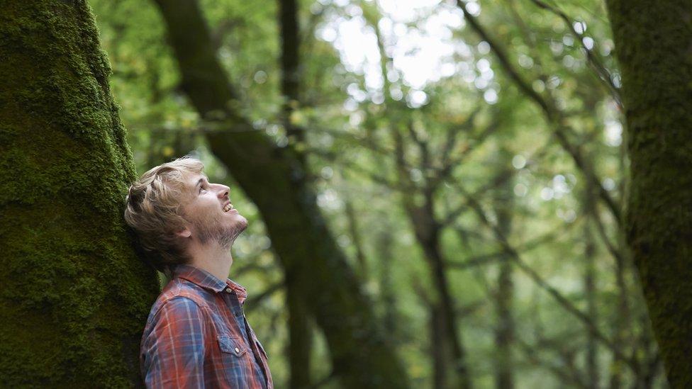 Un joven en un bosque.
