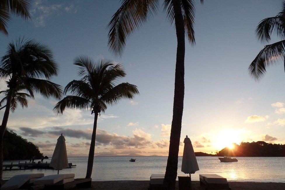 Palm trees at the luxury Carlisle Bay resort in Antigua - December 2015