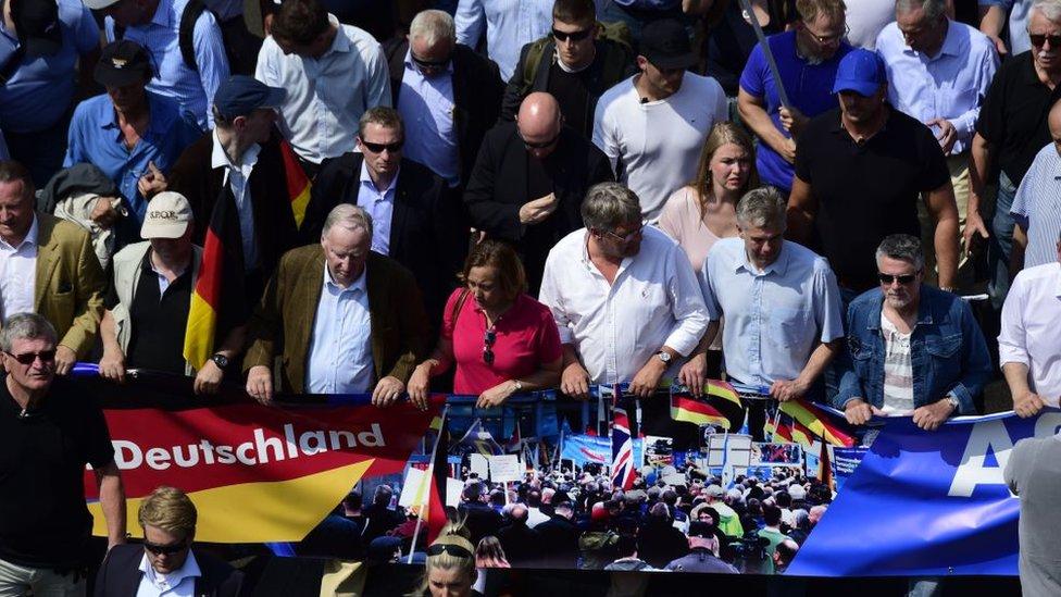 Manifestación en Alemania de AfD