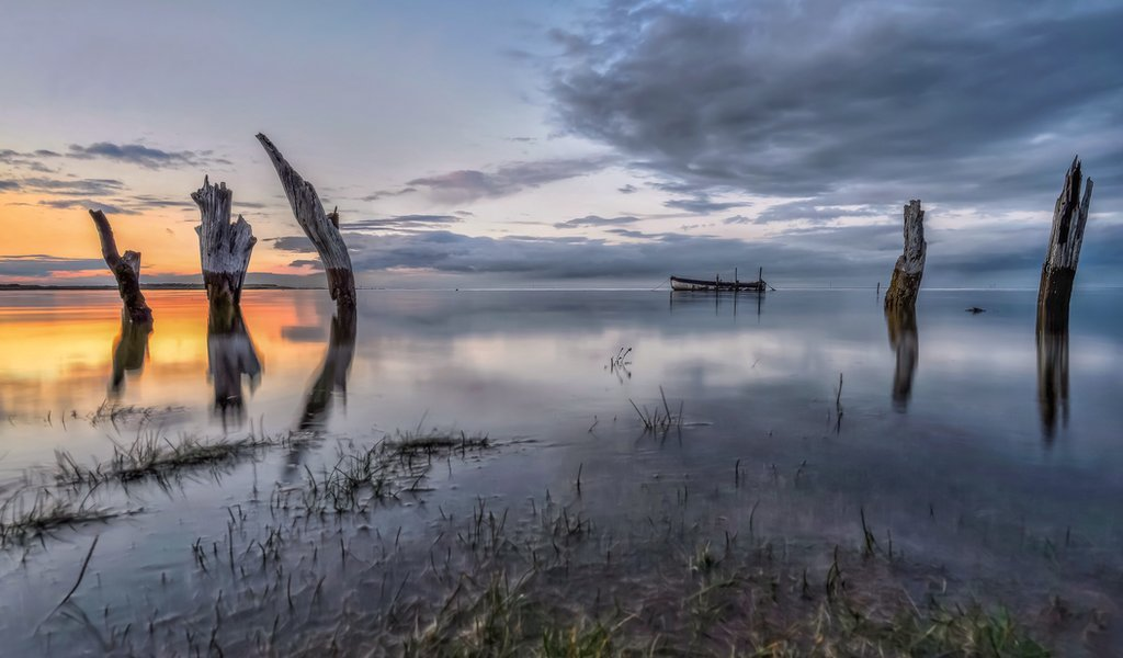 Wooden pilings at sunset