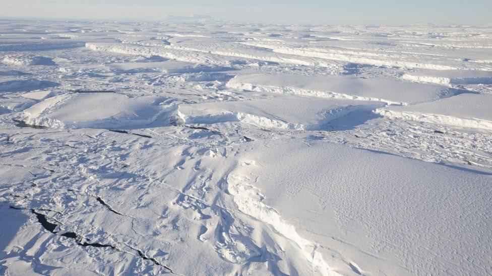 思韋茨冰川