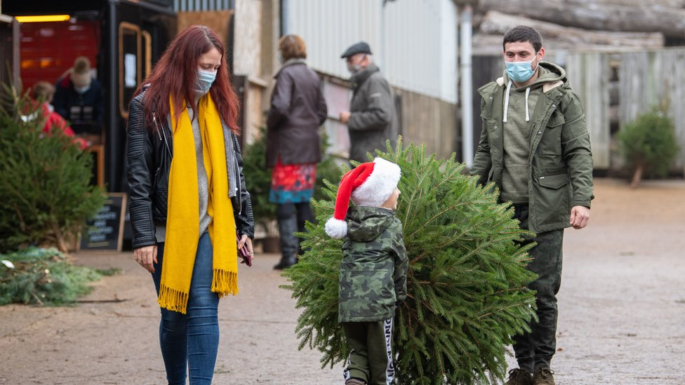 Parents in masks with small boy in Santa hat carrying Christmas tree from farm in Rutland