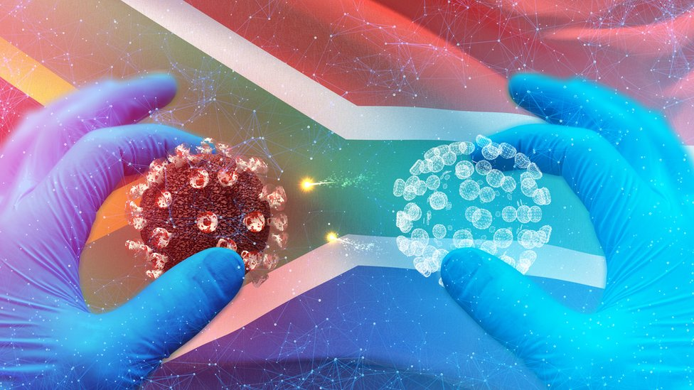 Concept graphic showing gloved hands holding 3D illustration of the Covid-19 molecular with the South African flag in the background