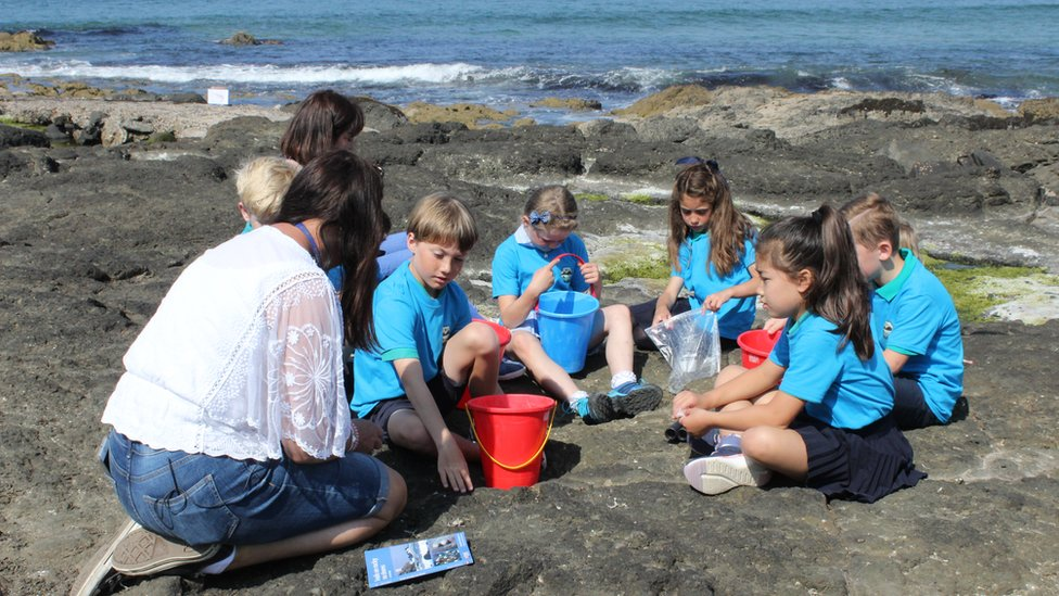 Outdoor Detectives from Mill Strand Primary School in Portrush exploring rock pools