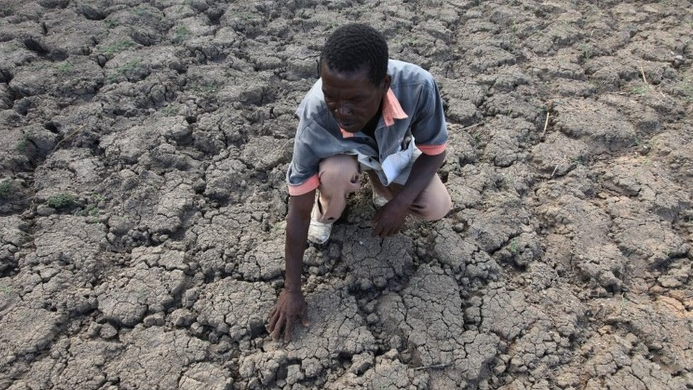 Farmer inspects his dry land