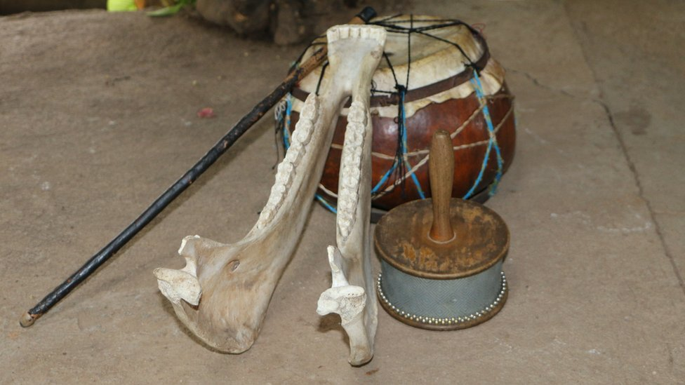 A quijada - donkey's jawbone, used as a musical instrument
