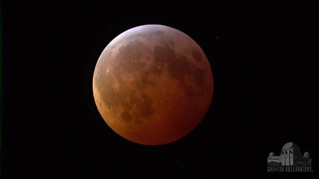 The rare super blood wolf moon eclipse