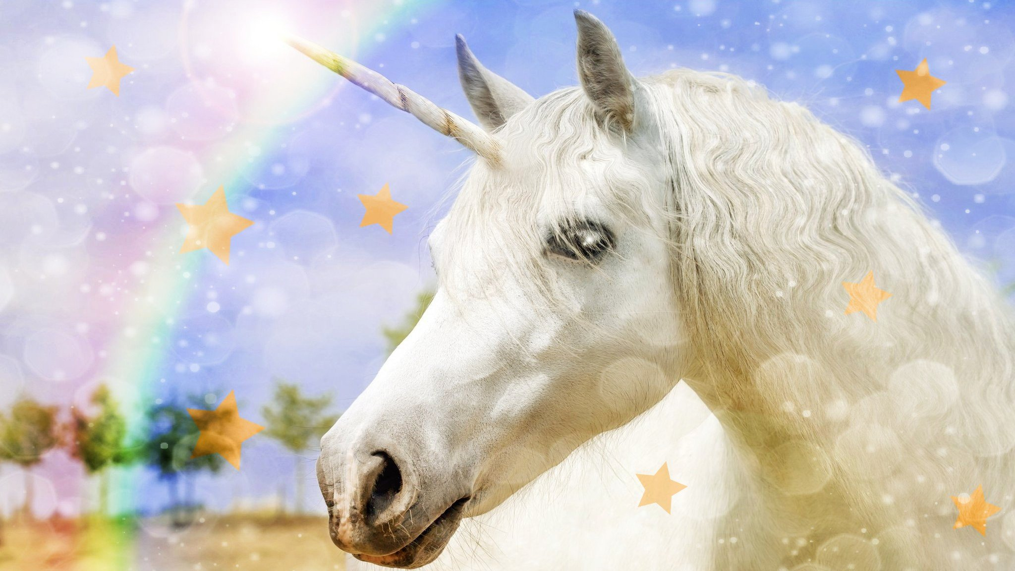 National Unicorn Day Is Really Here Cbbc Newsround