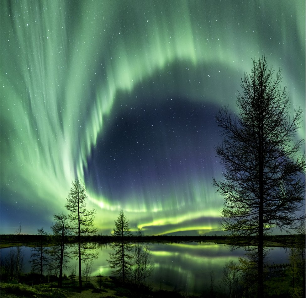 Northern lights over Siberian forest.