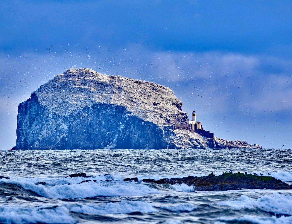 Alan BruceEdinburgh Bass rock with Gannets
