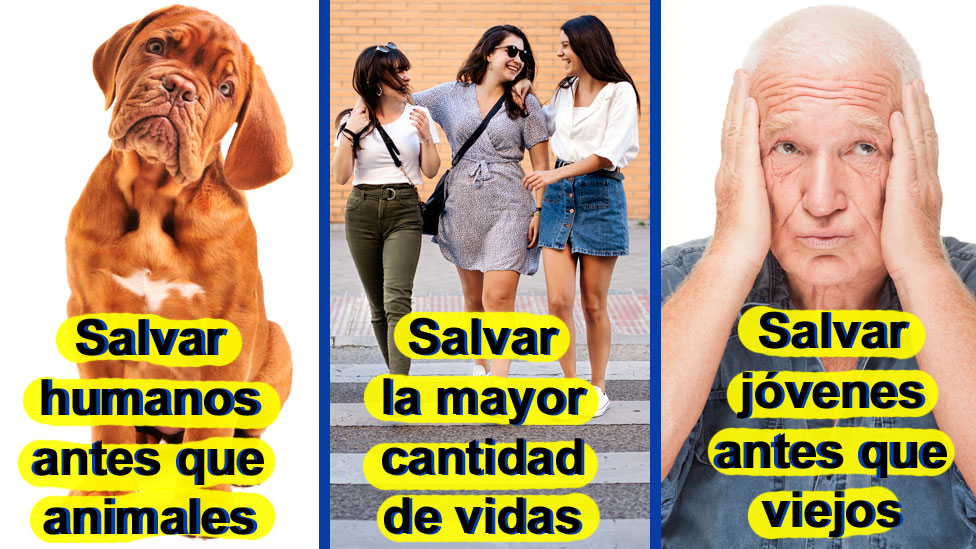 3 resultados del estudio: Salvar humanos antes que animales; jóvenes antes que viejos; muchos antes que pocos.