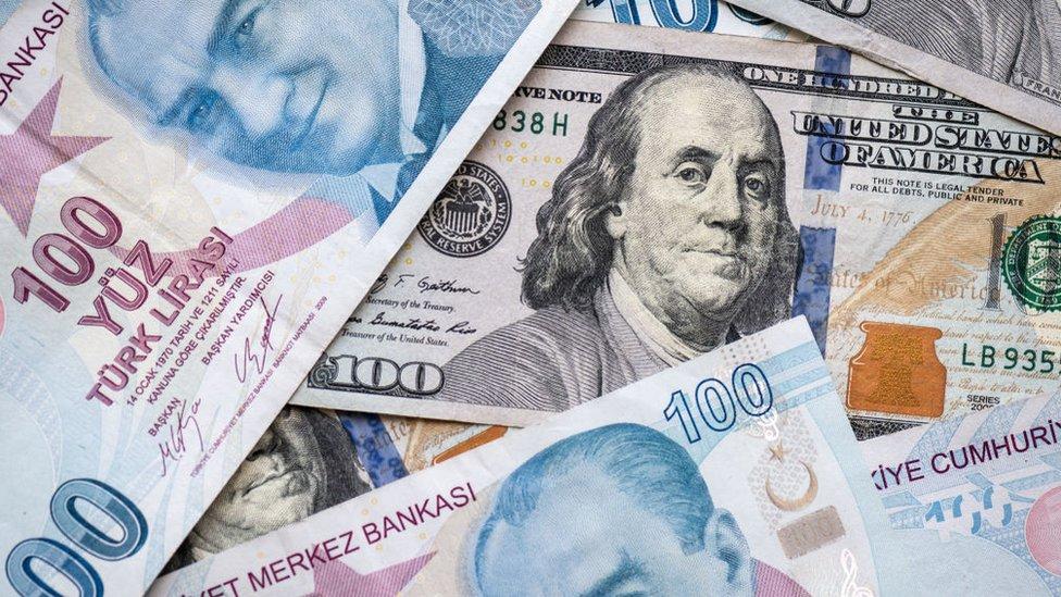 Dolar/TL banknotları