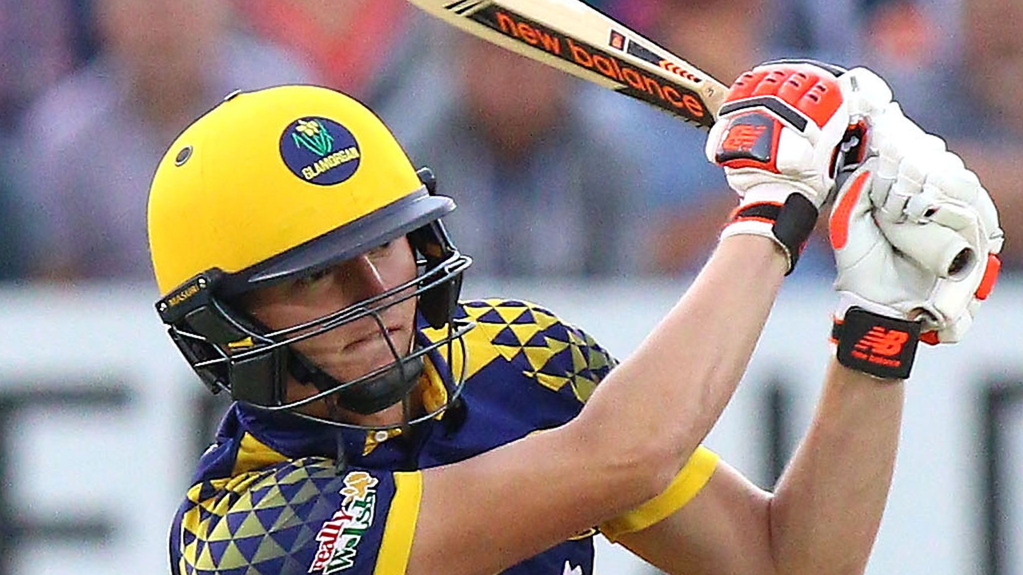 Aneurin Donald: Hampshire sign Glamorgan batsman on loan with a permanent deal to follow