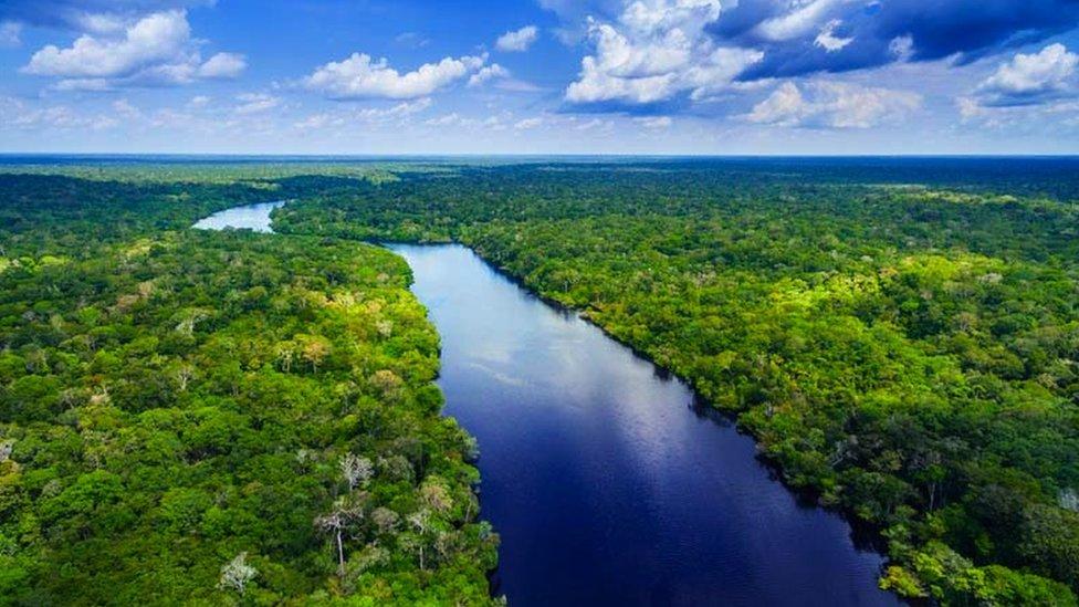 منظر جوي لنهر الأمازون في البرازيل