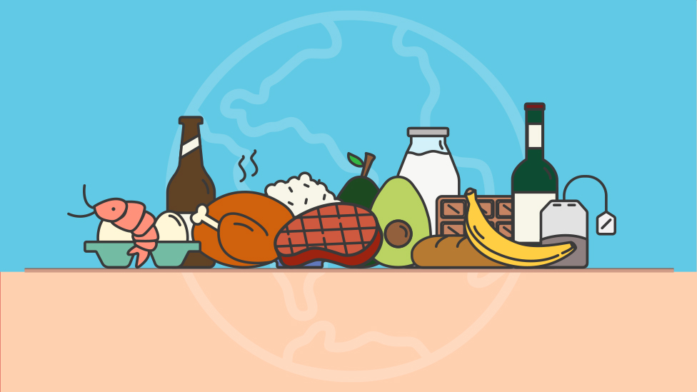 Climate change food calculator: What's your diet's carbon footprint?