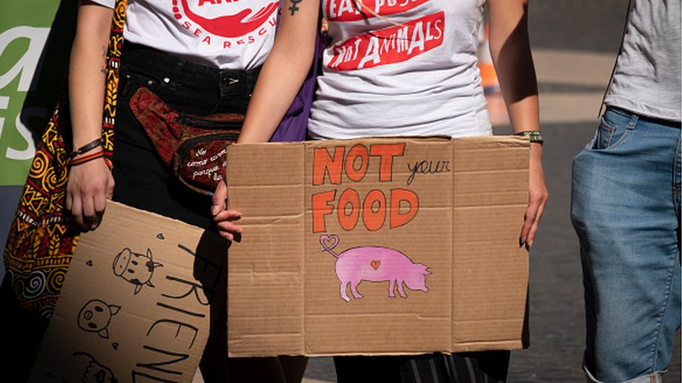 Protesters with placards in favour of veganism and against animal cruelty during the demonstration in Spain