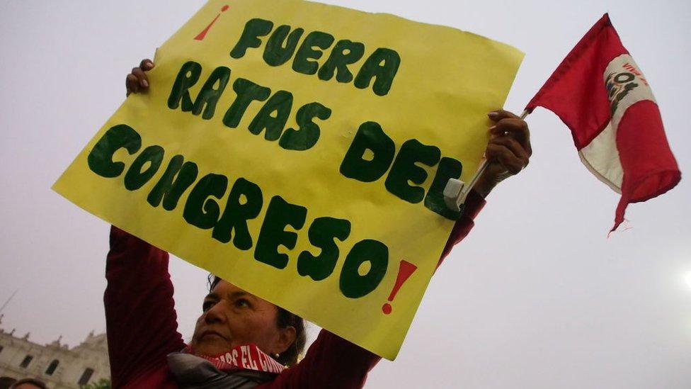 """Mujer con un cartel que dice """"Ratas fuera del congreso""""."""