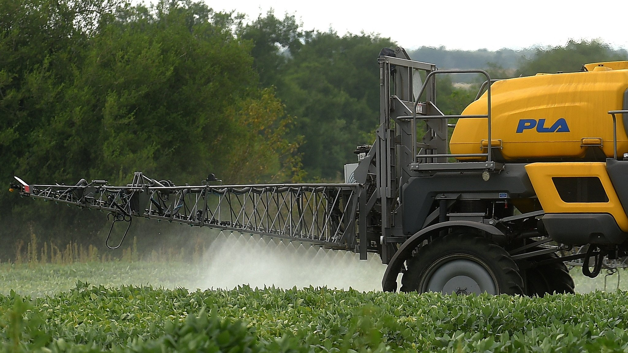 Monsanto ordered to pay $289m damages in Roundup cancer trial