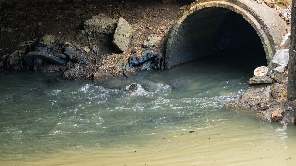 Brezilya ve İspanya'da Wuhan'daki ilk vakanın bildirilmesinden önce alınan kanalizasyon numunelerinde koronavirüse rastlandı.