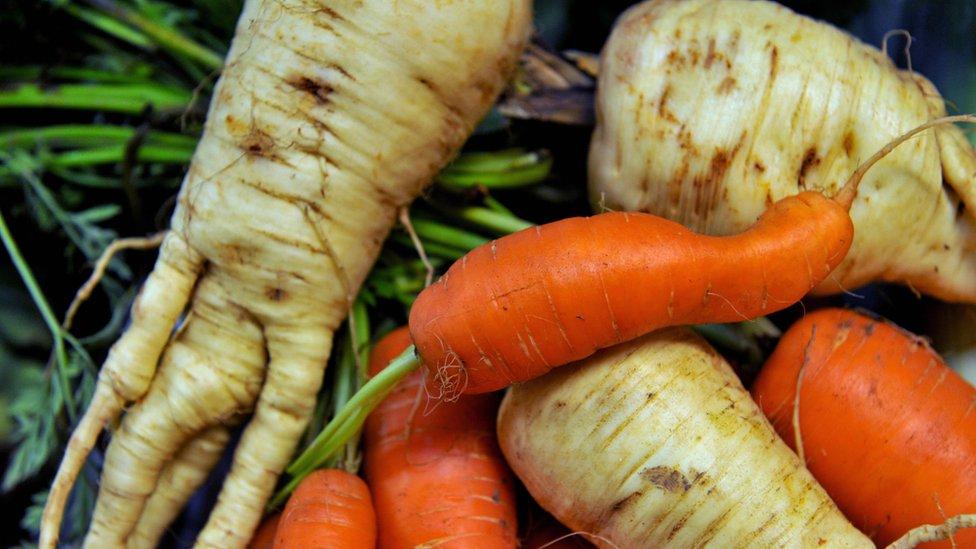 Zanahorias con formas diferentes