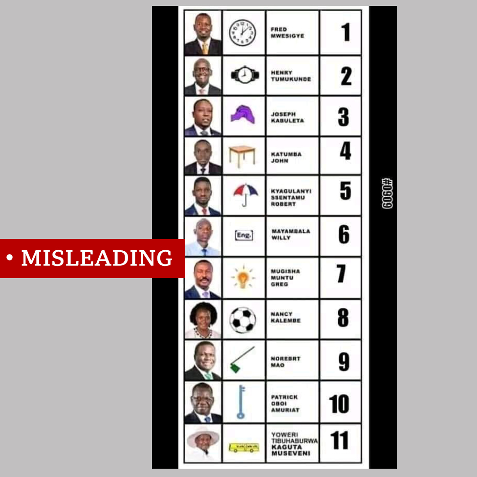 Screengrab of fabricated ballot paper