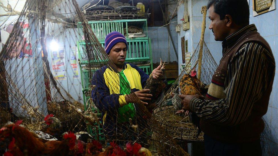 Mercado en Bangladesh durante un brote de gripe aviar.