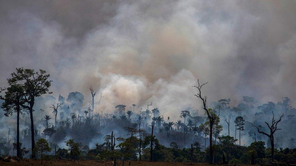 Dim se uzdiže iz šumskih požara u državi Para 27. avgusta 2019