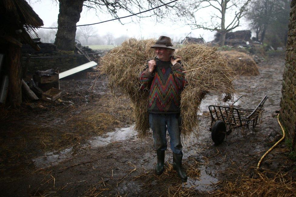 farmer Žan Bernard Jun
