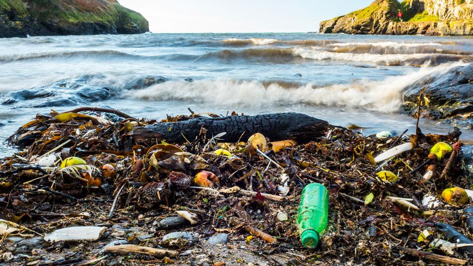 Plástico en la costa