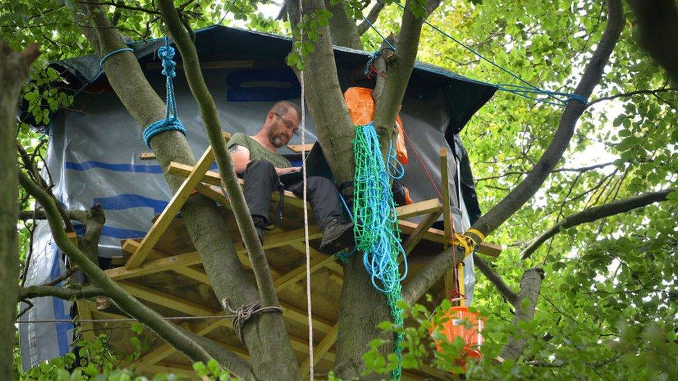 Steve Masters works in his tree house