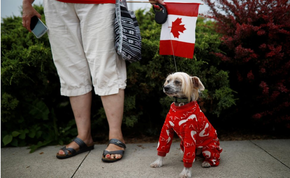 A woman holds her dog dressed up in Canada clothing during the East York Toronto Canada Day parade