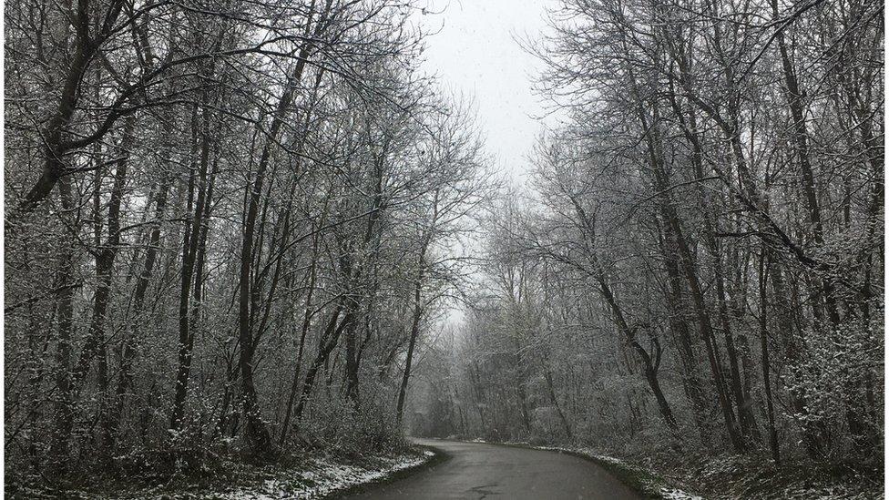 Put ka selu, Knjaževac, mart 2020.