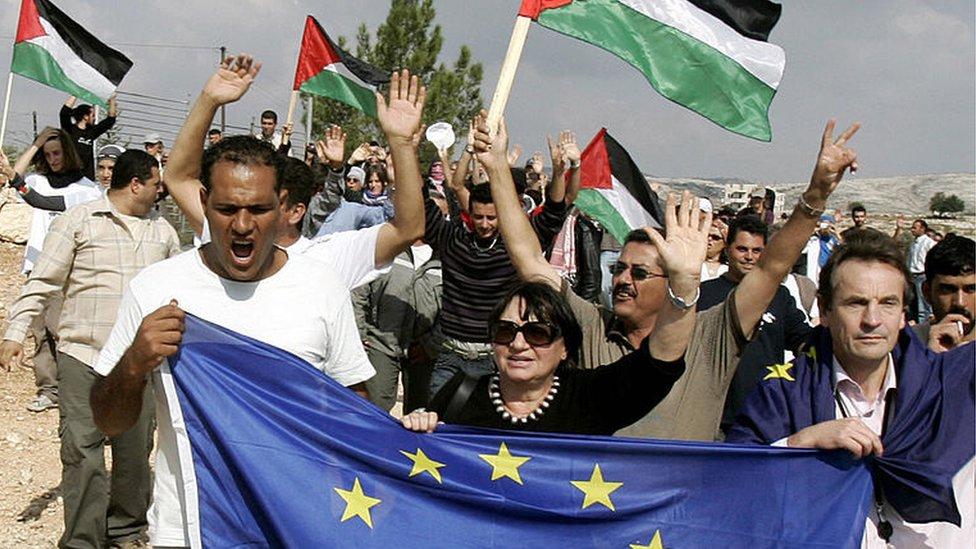 Vice-President of the European Parliament Luisa Morgantini holds EU flag at Palestinian protest near Ramallah (file photo)