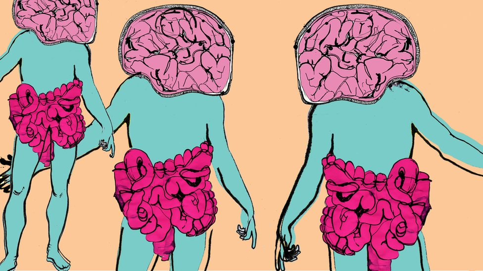 Gut-Brain illustration