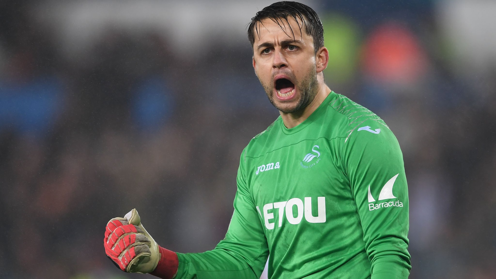 Lukasz Fabianski: West Ham sign Swansea City's Polish goalkeeper