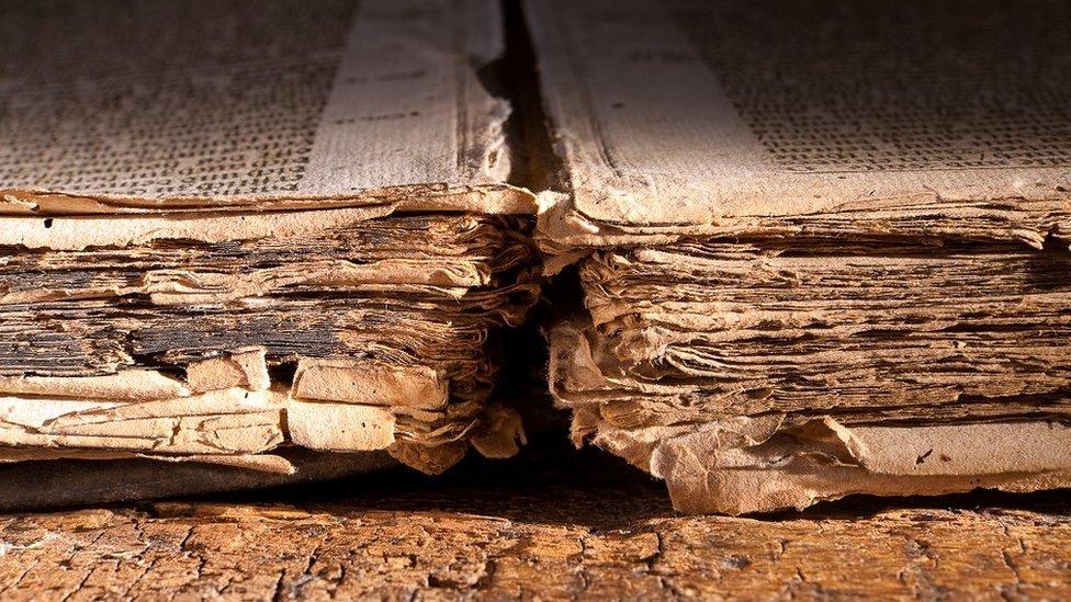 Páginas carcomidas de un libro antiguo.