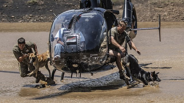 Instructors and their elite dog unit in training