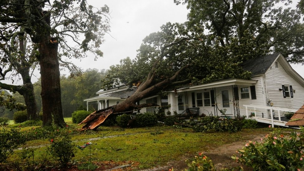 A tree is pictured on top of a house in Wilson, North Carolina