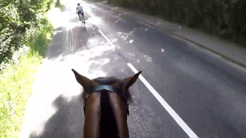 'Horse hit' as Windsor Triathlon cyclists passes