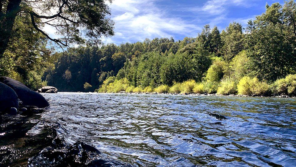 The Cautín River in southern Chile