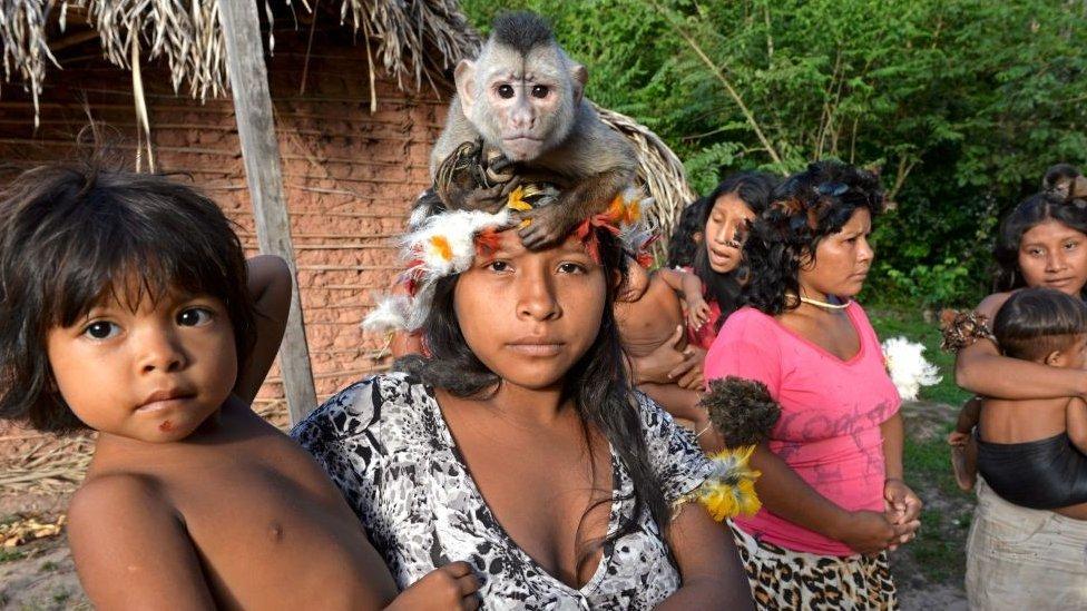 Indígenas no contactados