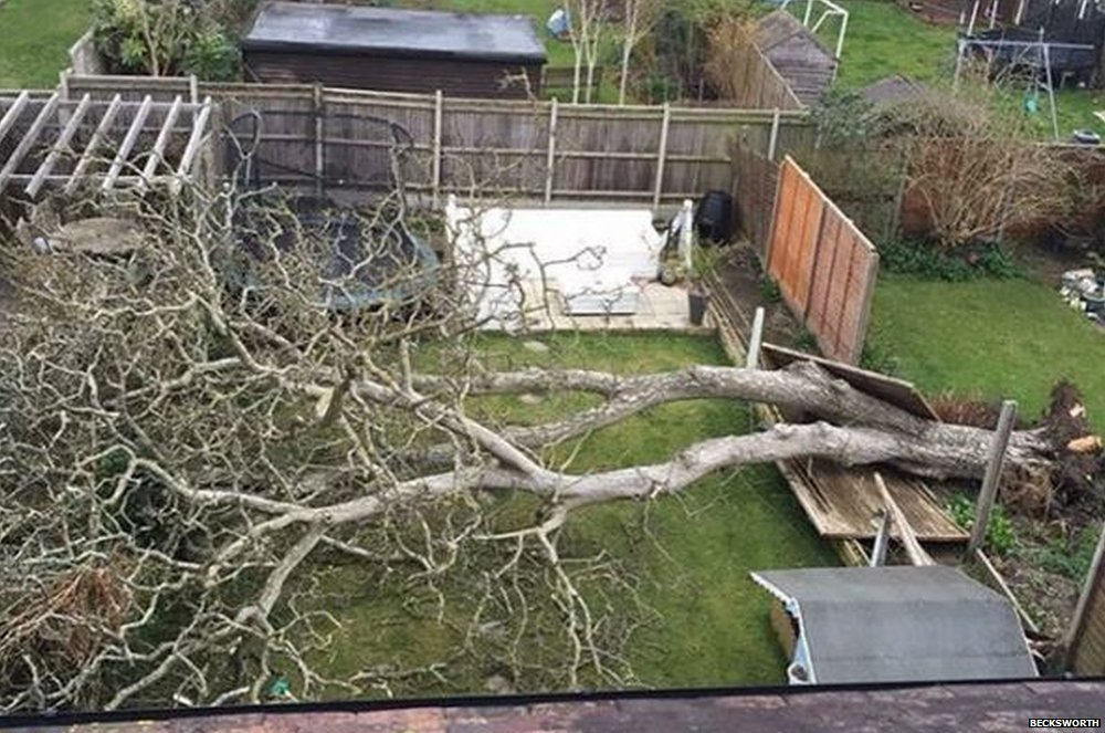 This aerial view taken by @becksworth on Instagram shows us Storm Katie destruction in her garden in Portsmouth, Hampshire.