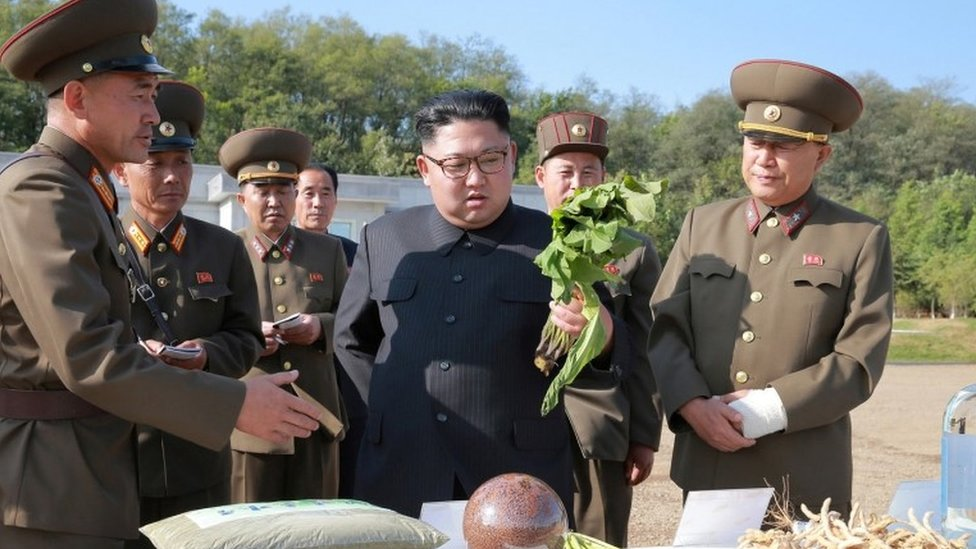 Kim Jong-un inspecting vegetables in Pyongyang (2017)