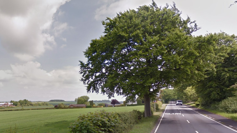 Winchester crash: Two men killed when car hits tree