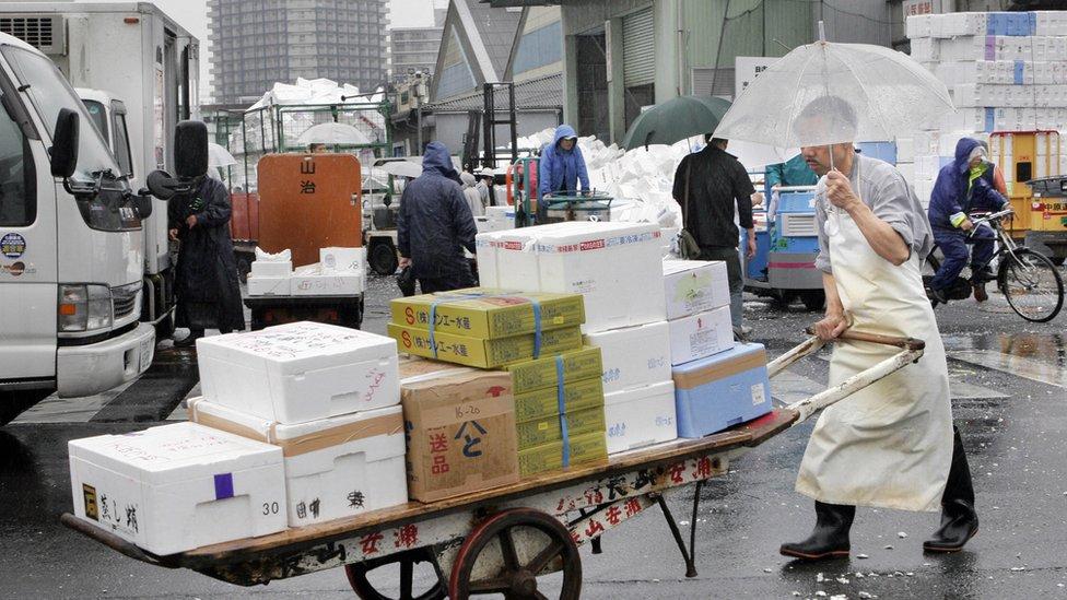 A fishmonger pushes a cart outside at the Tsukiji market