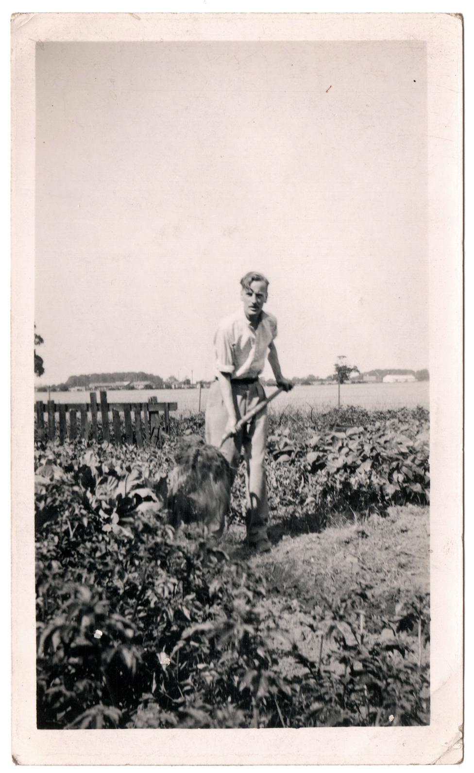 Žerat Selbi, na parceli u Donkasteru u leto 1940