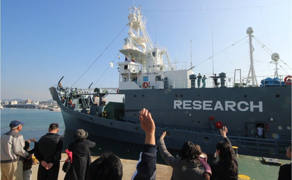 "A Japanese whaling ship leaves the port of Shimonoseki in Yamaguchi prefecture, south-western Japan on 1 December 2015, with the word ""research"" painted on the side"